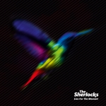 The Sherlocks - Live For The Moment